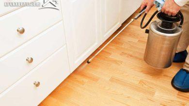 صورة الحفاظ على نظافة المنزل من الحشرات